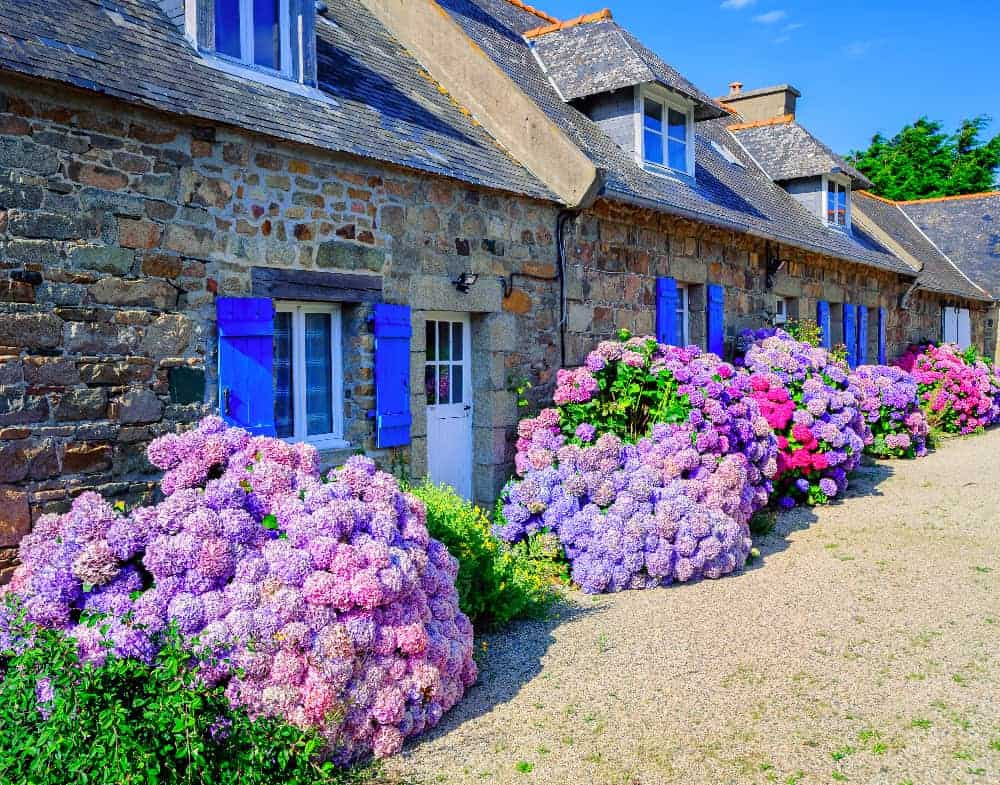 Loyer Maison Village France